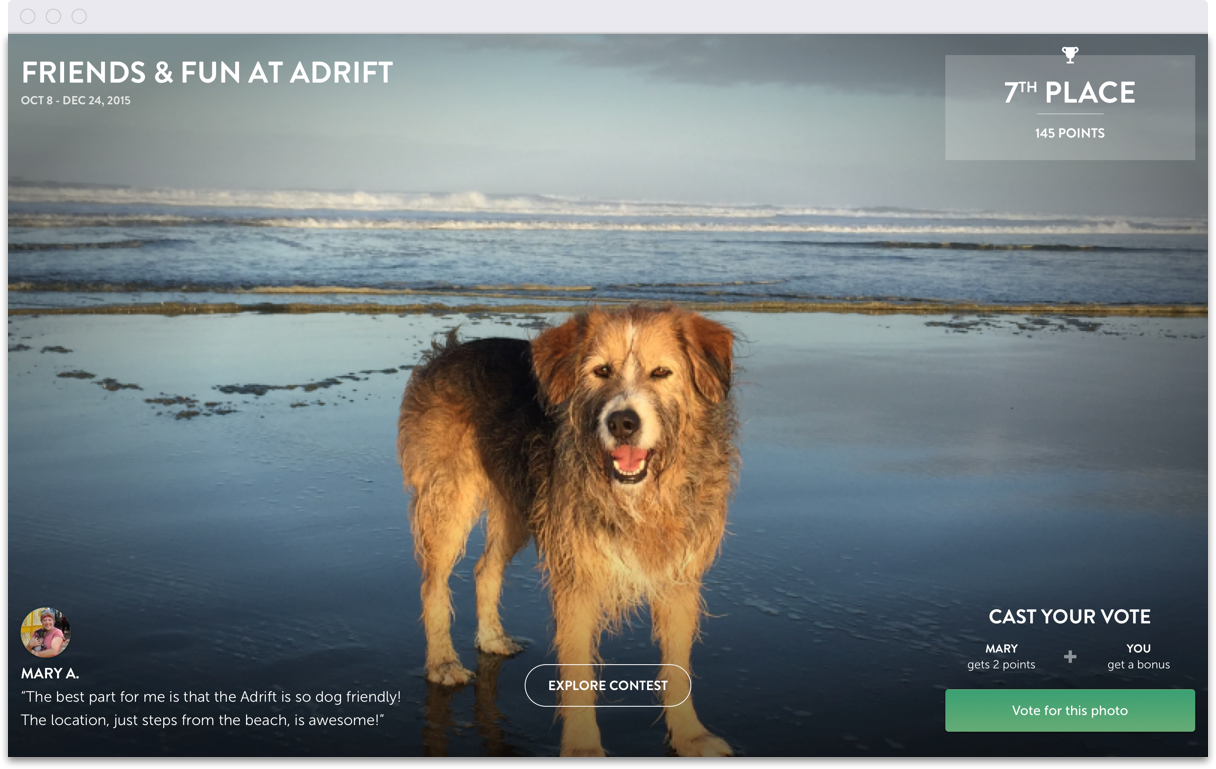 PhotoExplorer_Friend_Dog_2_Adrift