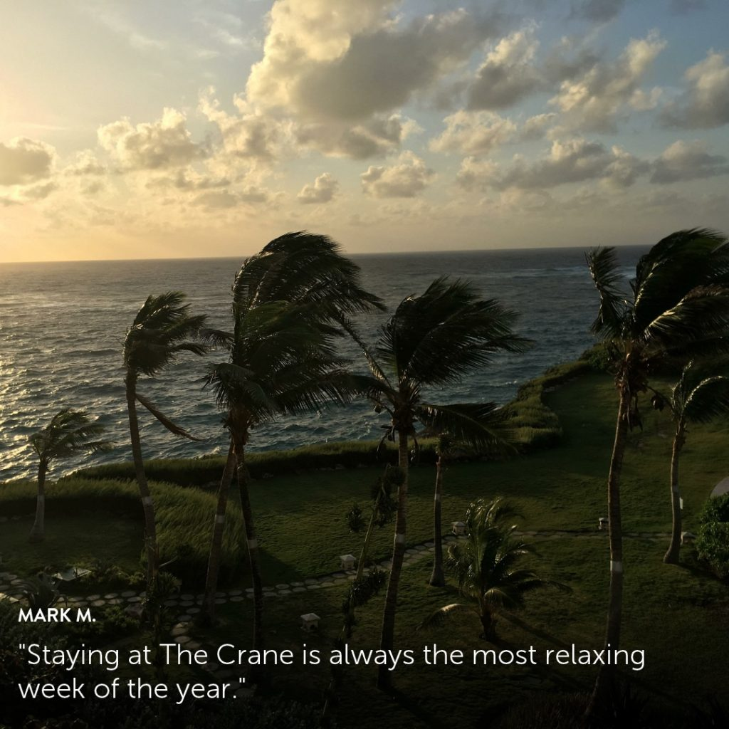 The Crane Resort brings to light guest stories with Flip.to