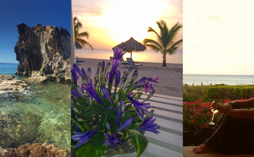 Just launched: Caribbean resorts shine on the advocacy platform